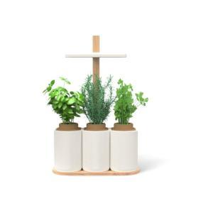 Jardin d 39 int rieur pret a pousser blanc et bois - Jardin hydroponique d interieur ...